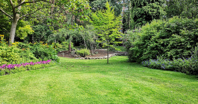 Here Are Some Awesome Landscaping Ideas For You To Design Your Perfect Yard Featured Gardening Blog Image